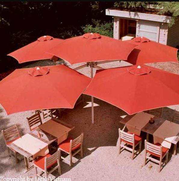 ô quán cafe 42